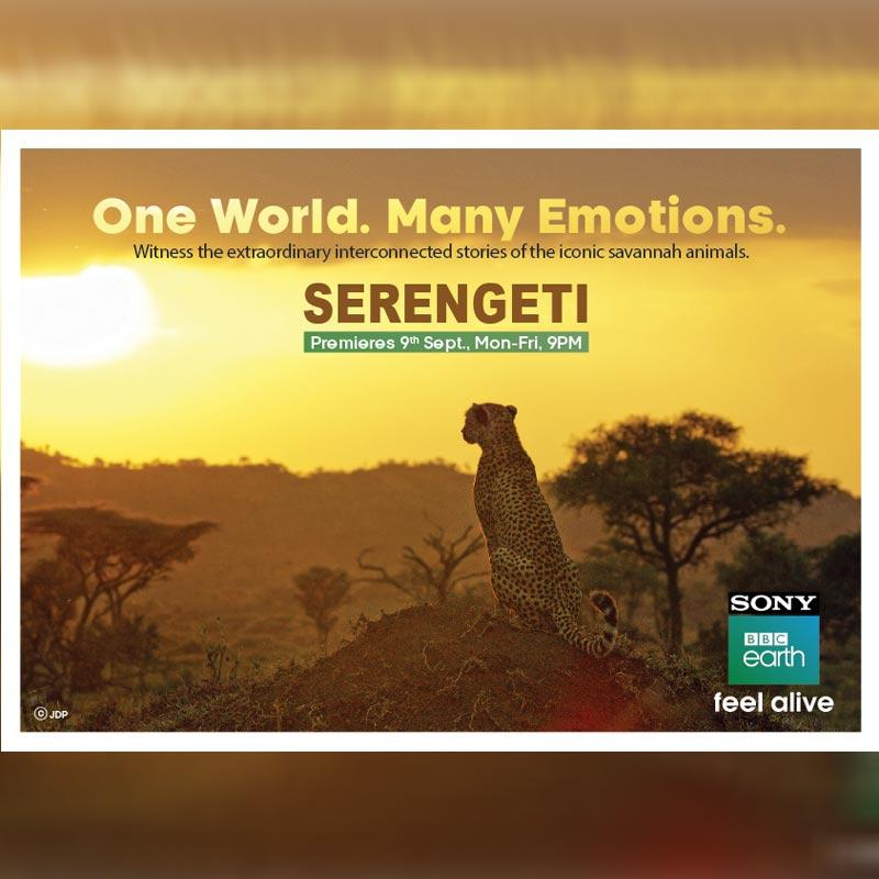 Sony BBC Earth to premiere 'Serengeti' - a series on